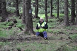 Will forest survey 10 June