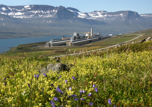Fjardaal_smelter_with_wildflowers